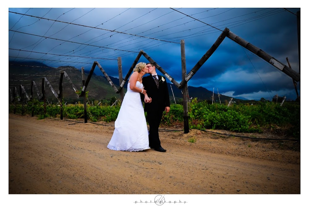 DK Photography Chantel%2B22 Chantel & Marco's Wedding in between Paarl & Franschhoek {in Fraaigelegen}  Cape Town Wedding photographer