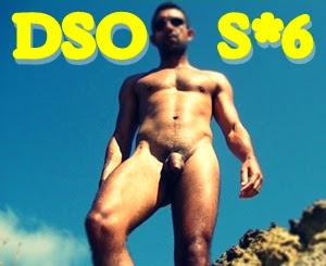 DSO S*6