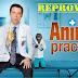 Primeiras Impressões de Animal Practice