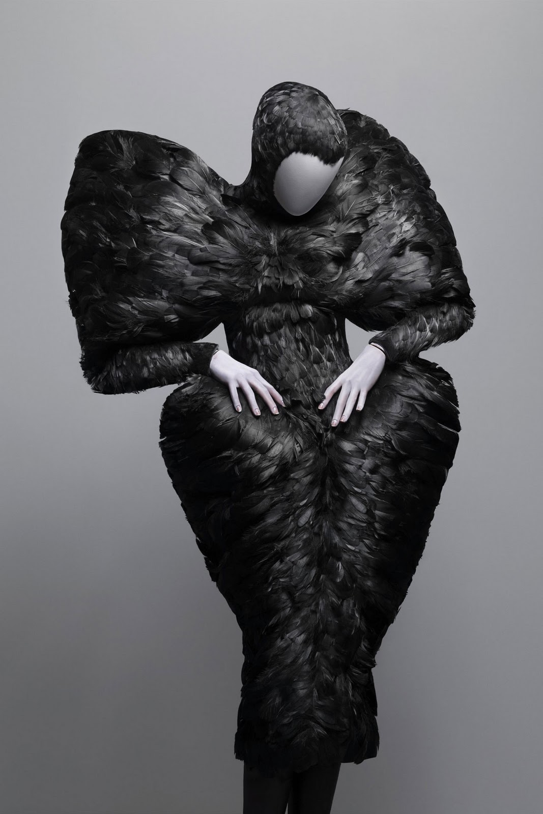 http://3.bp.blogspot.com/-w6rQXnosqmk/TdHuwqdzu4I/AAAAAAAAADQ/B9MZBp45P4U/s1600/Alexander_Mc_Queen9_black_feathers_dress_savagebeauty.jpg