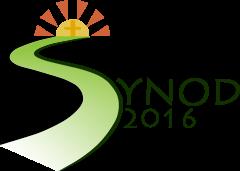 Limerick Diocesan Synod 2016