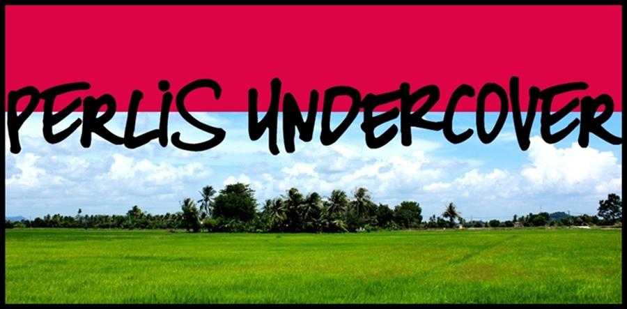 perlis undercover