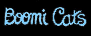 Boomi Cats