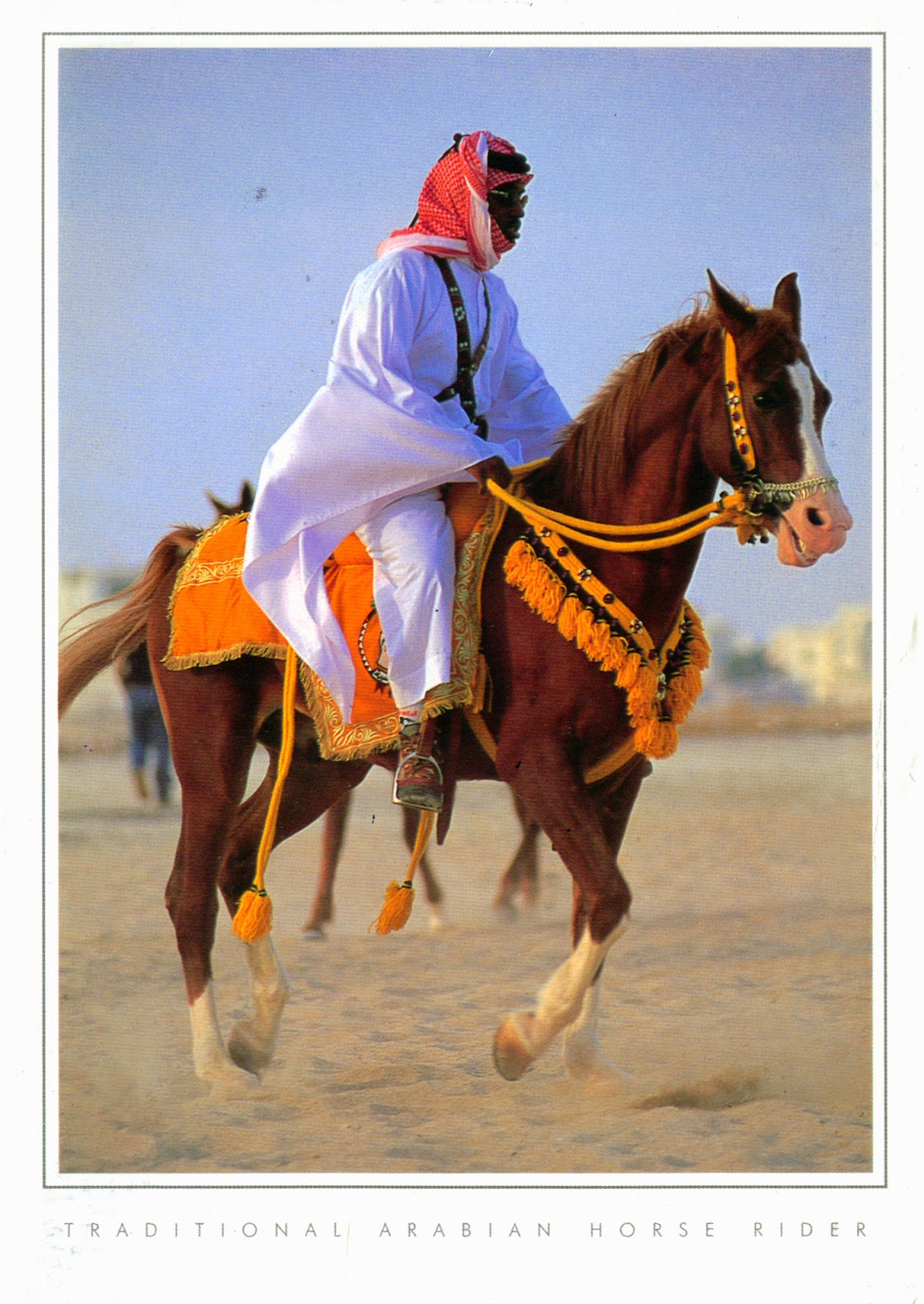 the arabian horse subcullture essay World war i essay 1060 words - 4 pages  (freshdirect & sysco) the arabian horse subcullture hippotherapy the battle to be heard: autism, language,.
