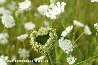 susis basteltipps mit stampin up: eine herzförmige Blüte