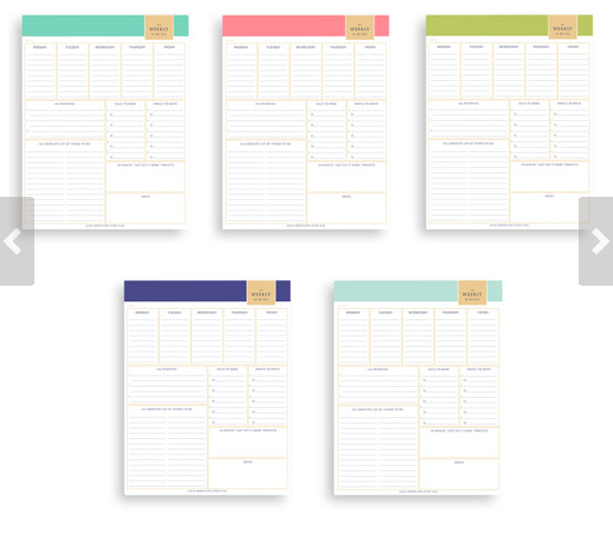 Operation Organize Your Day with daily printables - ShePlans Planners