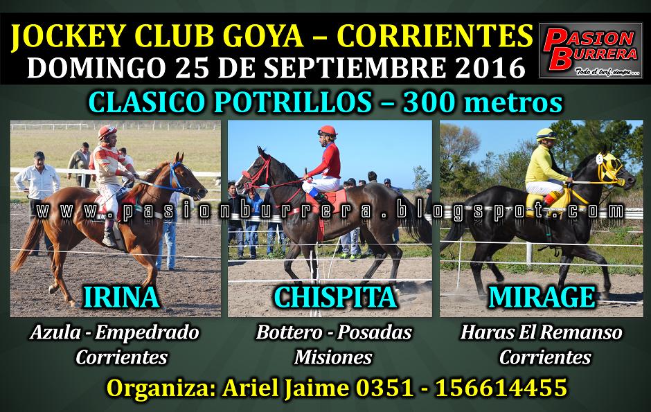GOYA 25 - 300- POTRILLOS