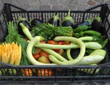 Cassette di verdura a km 0