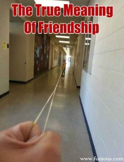 Funny Friendship Pictures