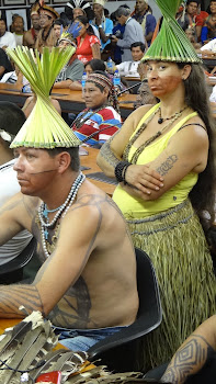 Mobilização  Indígena - ATL 2013