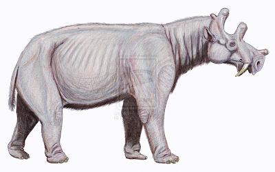Dinocerata Eobasileus