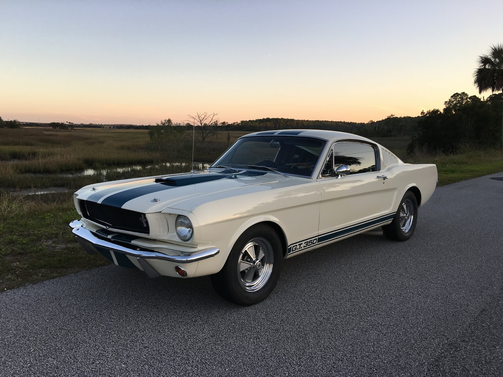 1965 shelby gt350 mustang for sale