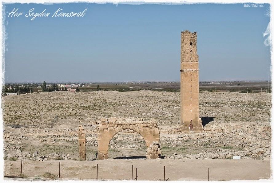 Harran Üniversitesi kalıntıları