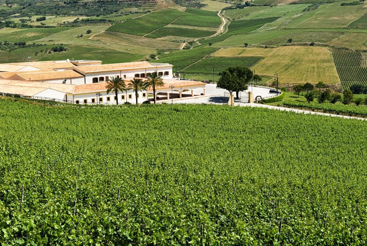 Feudo Arancio & Stemmari winery