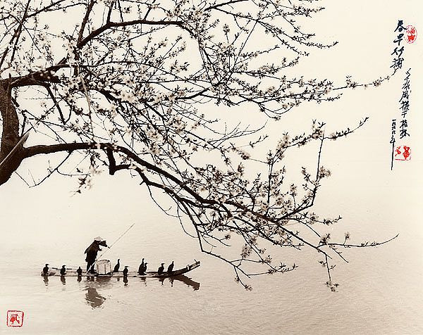 Don Hong-Oai fotografias photos