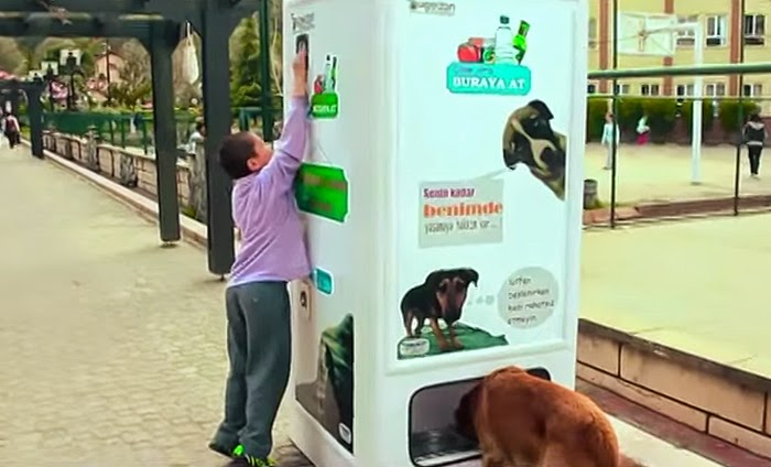 This machine helps them out by giving people an opportunity to feed them - This Vending Machine Takes Bottles And Gives Food To Stray Dogs In Exchange