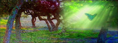 Beautiful trees and butterfly oil paintings and arts facebook timeline cover