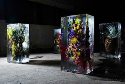 Azuma Makoto, ICED FLOWERS