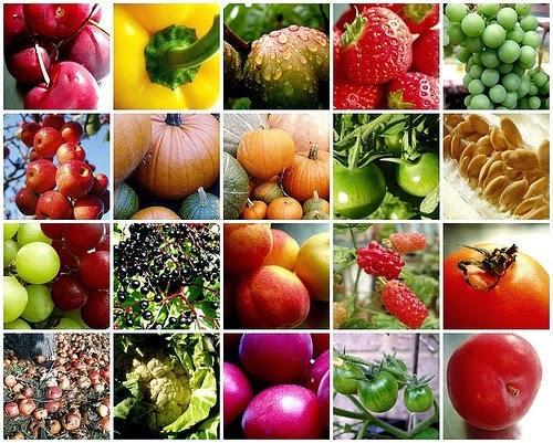 Dieta owocowo-warzywna na detox