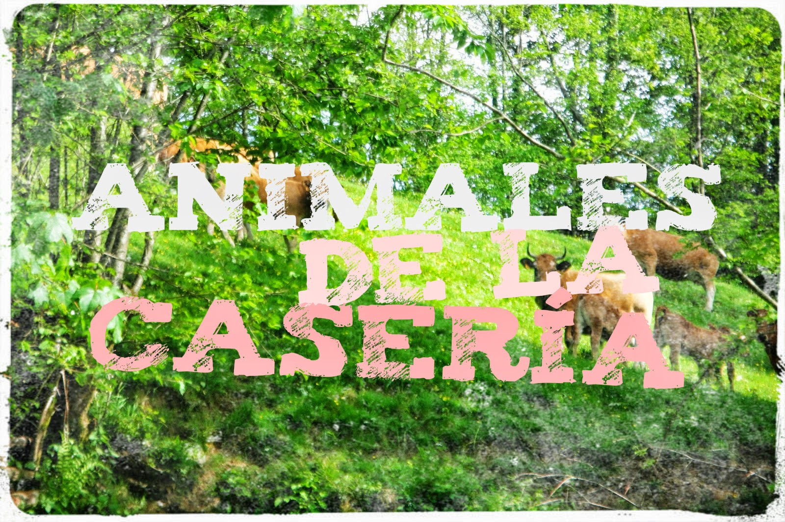 http://llinguanelaula.blogspot.com.es/2014/09/los-animales-de-la-caseria.html