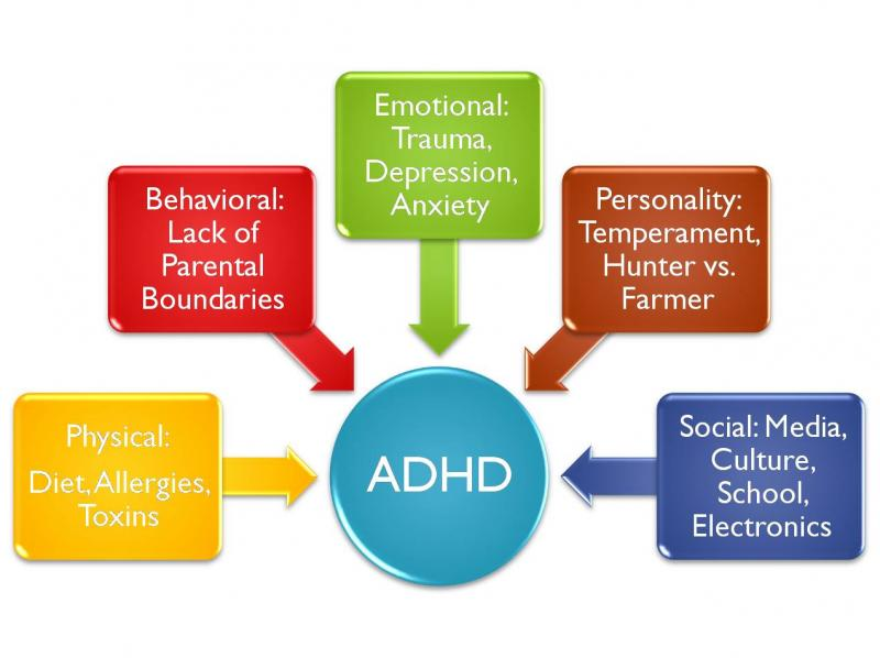 Adhd Kids Affect In School
