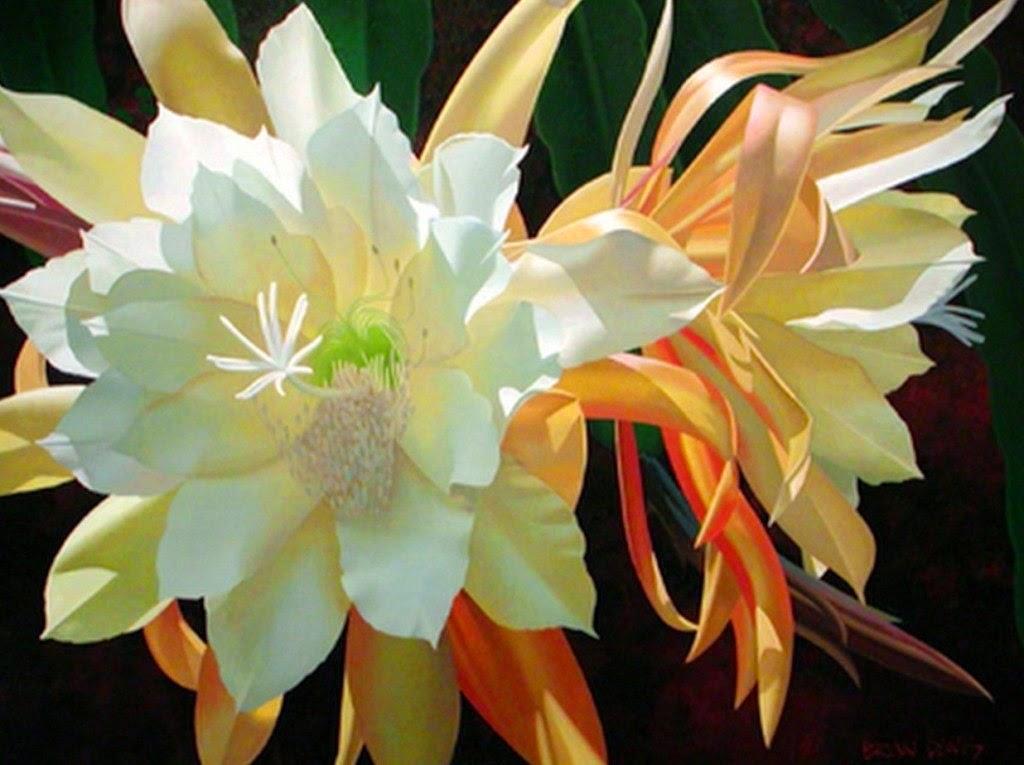 flores-fantasticas