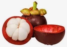 Ekstrak Kulit Manggis Komposisi Obat Herbal AgaricTop