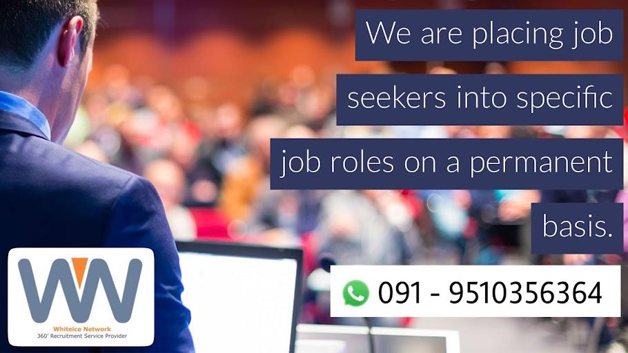 Whiteice Network - 360° Recruitment Service Provider