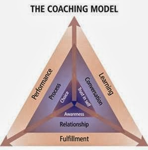 Executive coaching and training