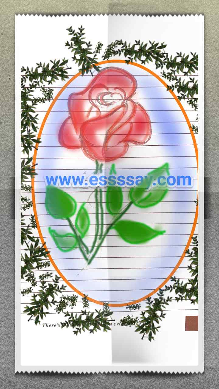 essay flower rose