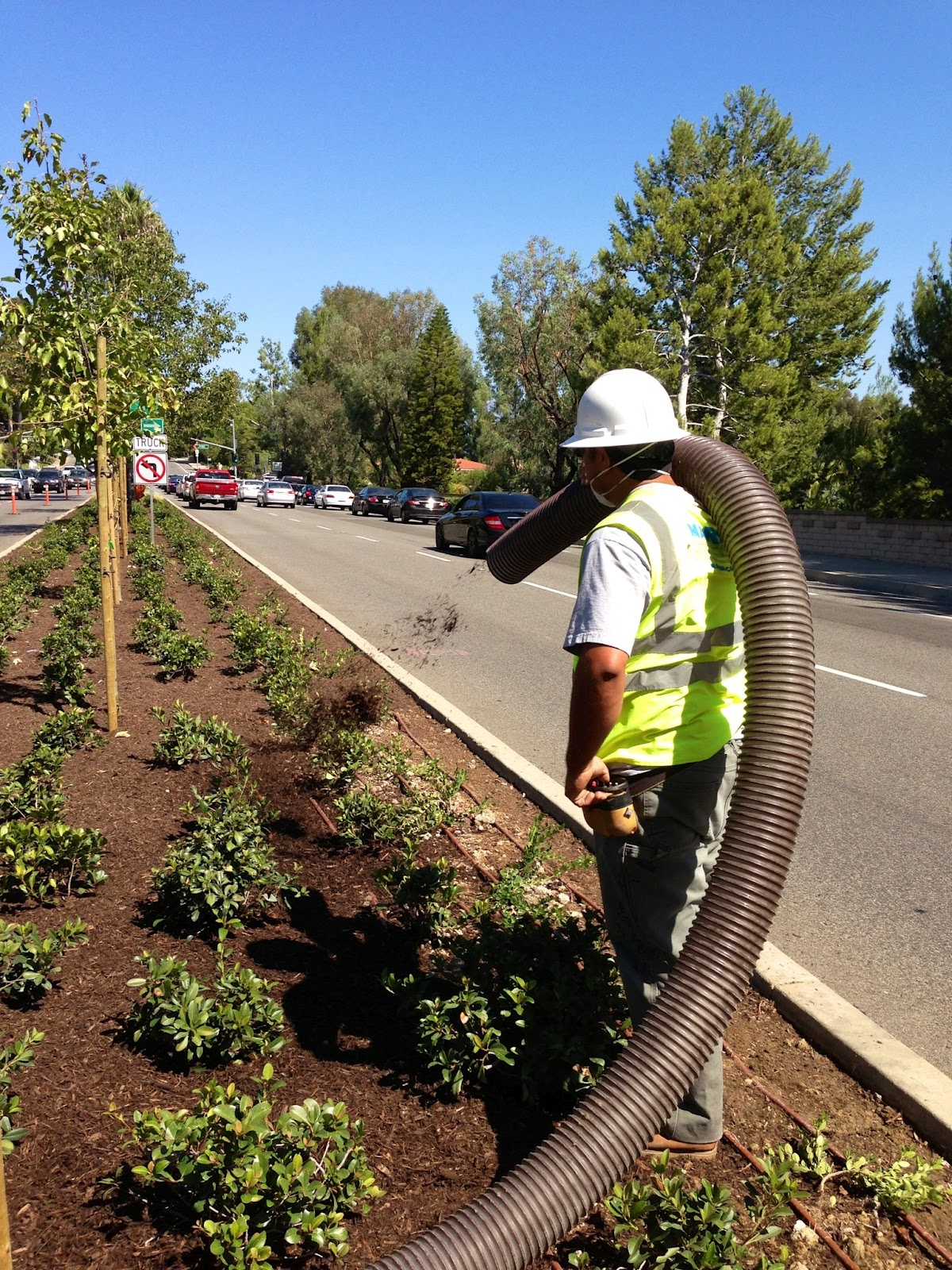 aguinaga green: forest floor mulch in mission viejo