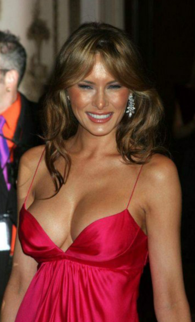 Image result for melania trump hot