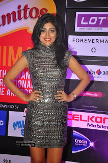 Sriya-Saran-at-SIIMA-Awards-2013