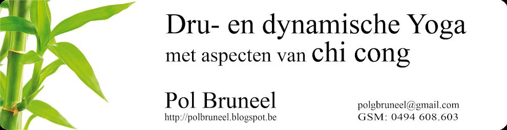 Pol Bruneel - Dru en Dynamische Yoga