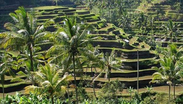Keajaiban Dunia di Indonesia