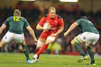 Alun Wyn Jones, Wales, South Africa, Defeat, rugby, Millennium Stadium, Cardiff, International