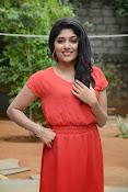 Samyuktha Hornad Glam pics-thumbnail-20