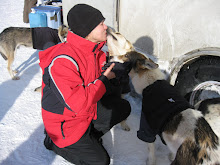 Sled Dog Kissses