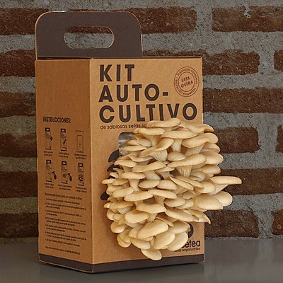 Kit Autocultivo de Setas