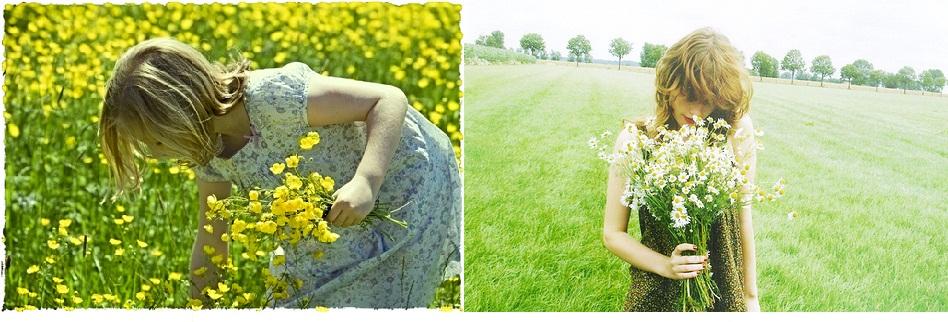 El Secreto de las Flores - Aromas