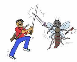 Cara Mengurangi Populasi Nyamuk