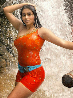 namitha having bath photos