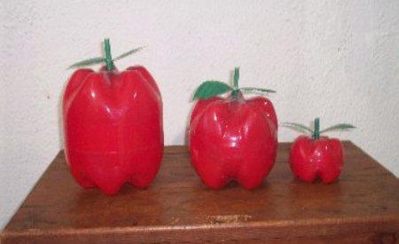 Manzanas decorativas con botellas