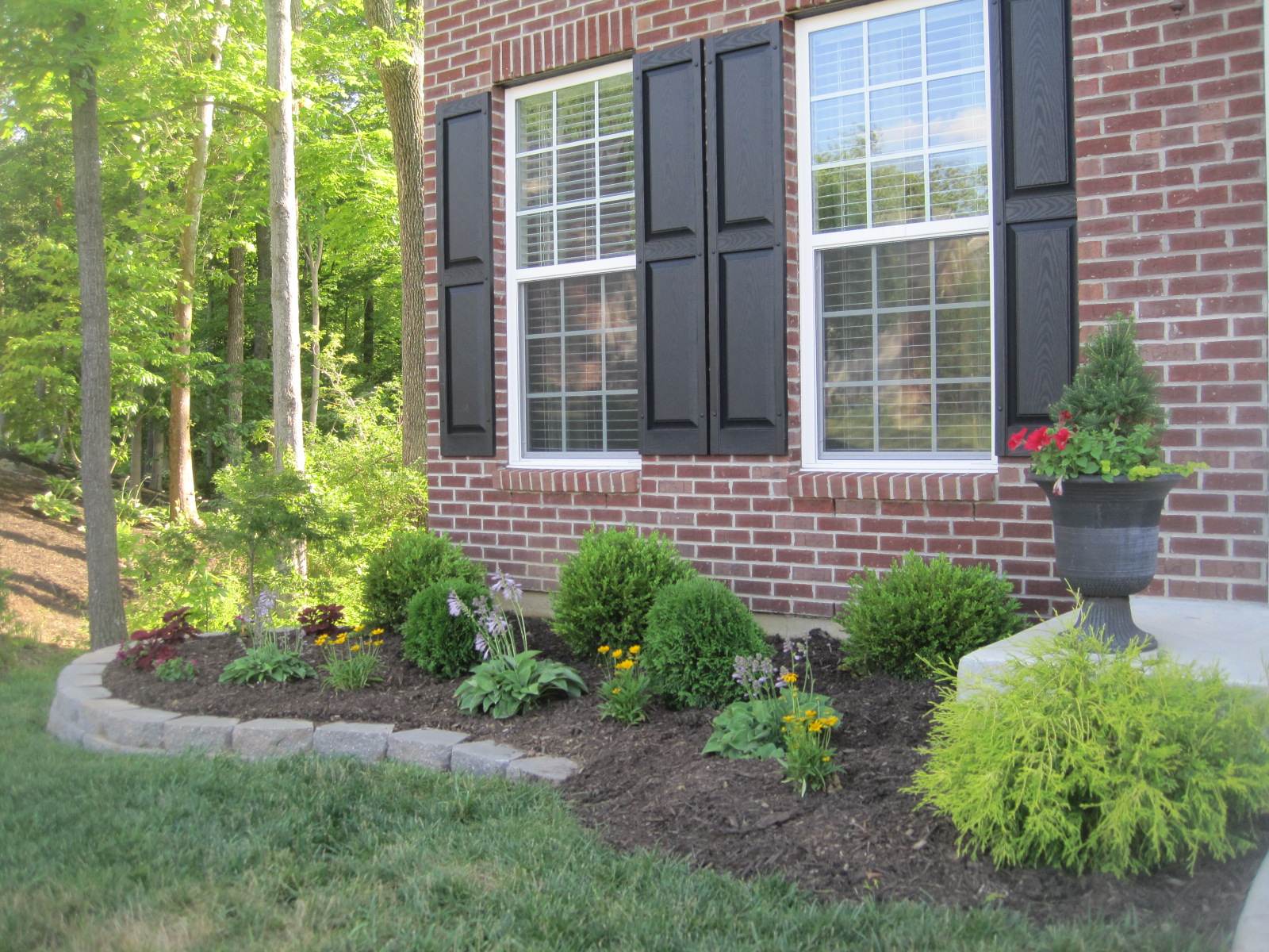 Designed to dwell landscaping retained for Landscaping shrubs