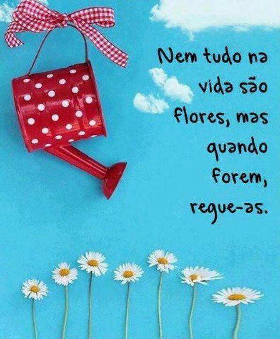 Reque suas flores!