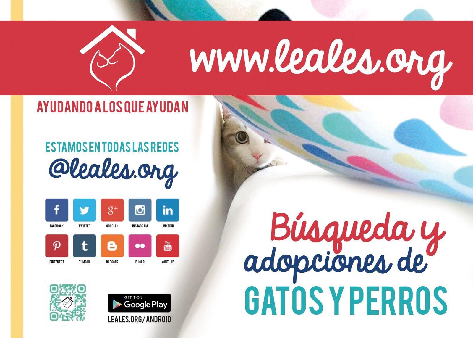 Leales.org