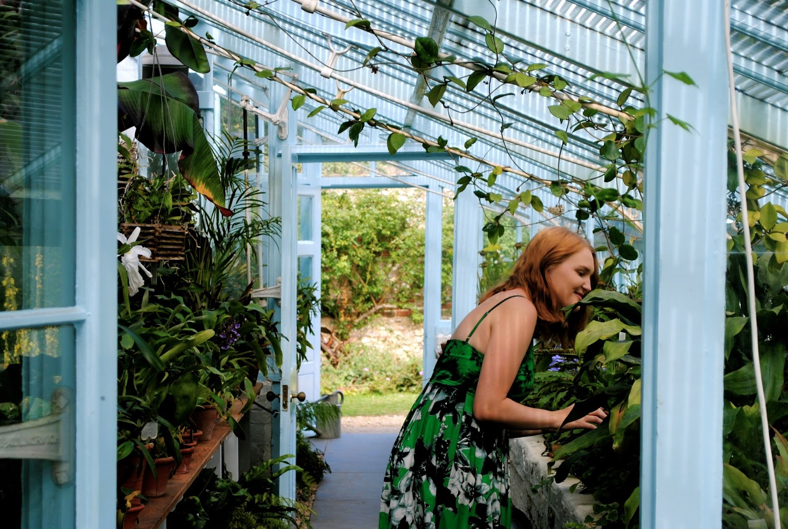 Visiting Charles Darwin's Greenhouse wearing Shakuhachi  photogenic green midi dress