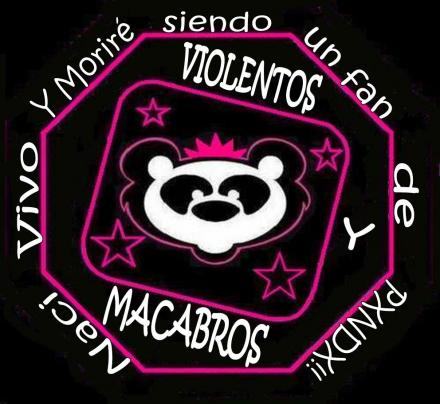 www grupo panda: