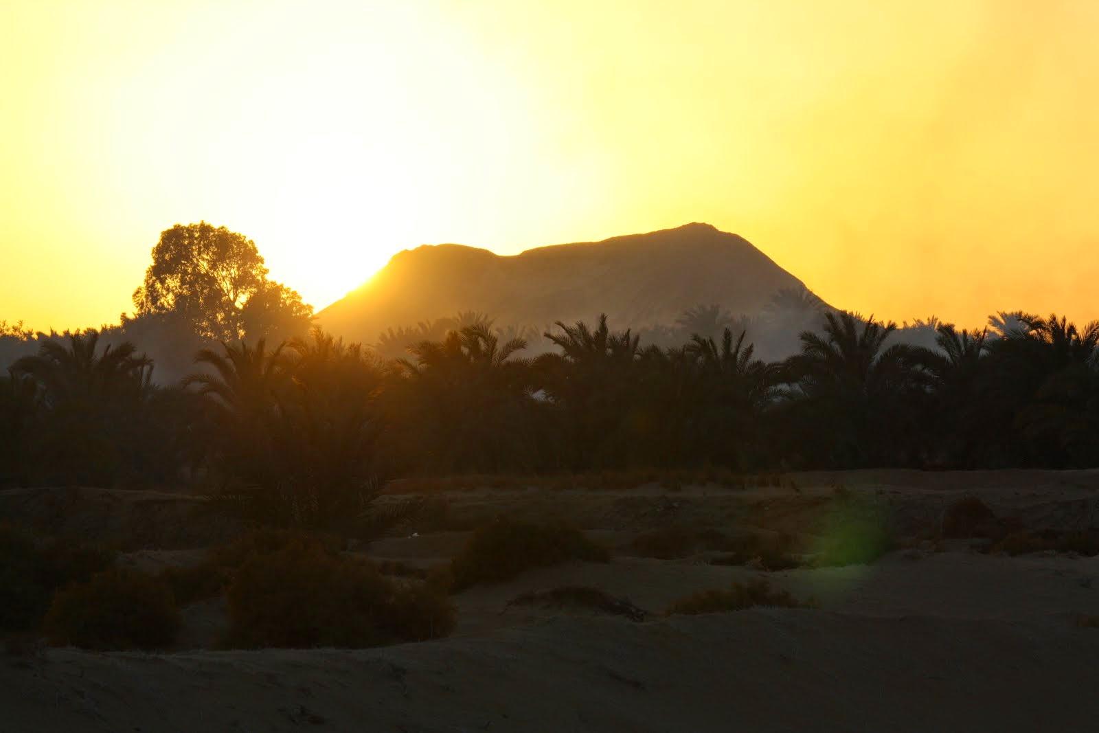 A View at the Western Desert Oasis Village of El Heiz