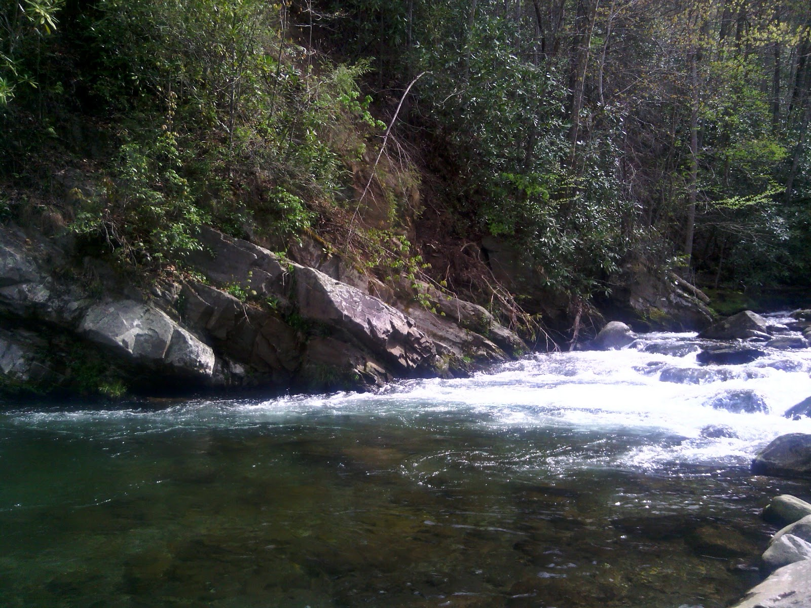 Tennessee fly fishing smoky mountain spring saftey tips 2013 for Fly fishing smoky mountains